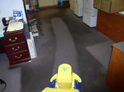 High quality carpet clean